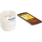 Candle Light Bluetooth Speaker