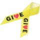 Full Color Awareness Ribbon with Pin